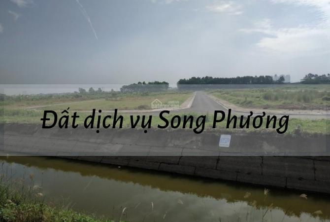 Đất dịch vụ Song Phương